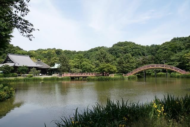 阿字ケ池全景