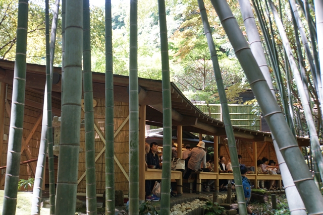 休耕庵で竹林を眺めながらお抹茶をいただけます