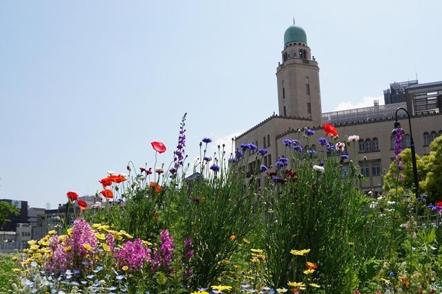 山下公園からクイーンの塔が見える花道
