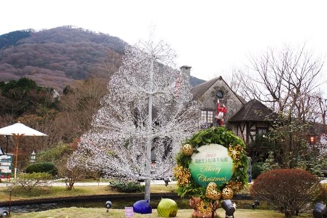 クリスマスツリー (ラ・コッピア)