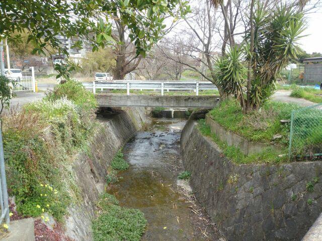 石澄川を清掃 - 箕面市NPO みのお川を美しくする会