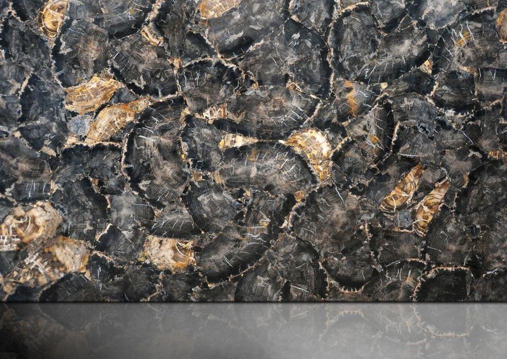 Black petrifeid wood