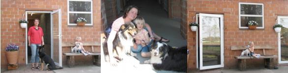 In der Hundepension hat ihr Hund familiären Anschluss