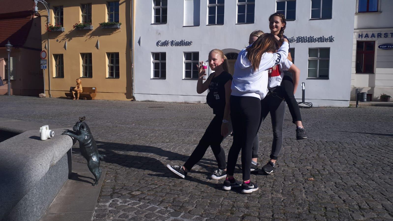 Die Mops- Rallye