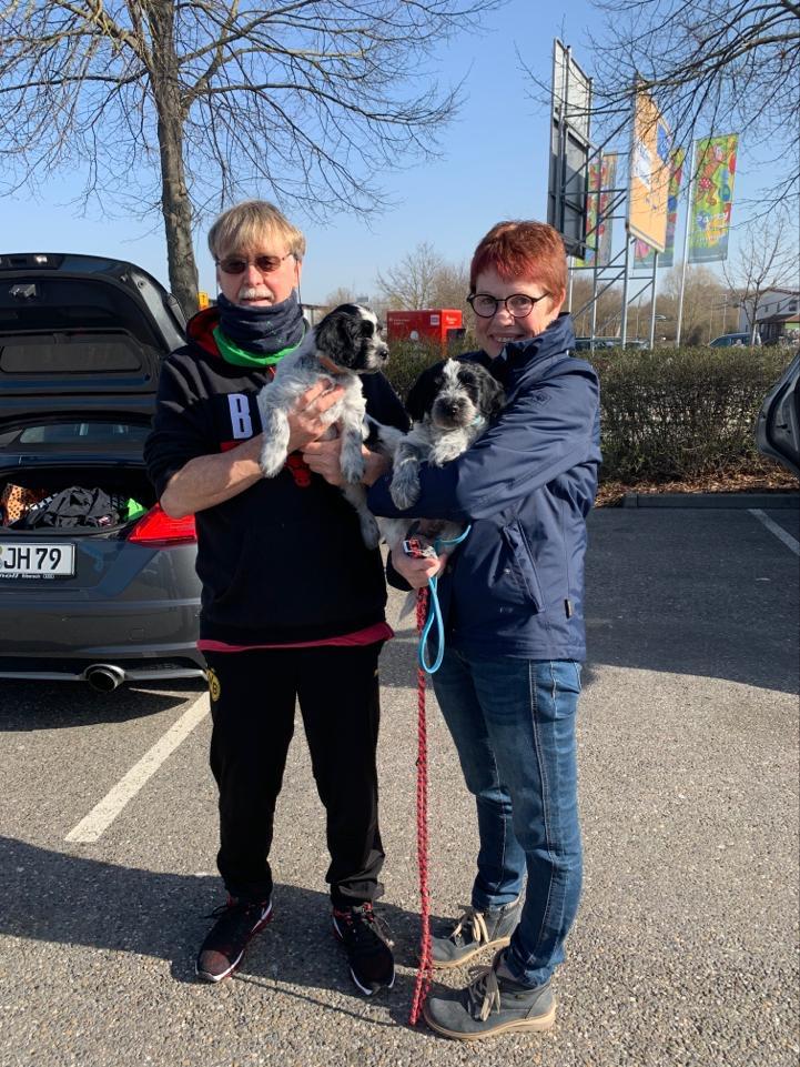 Bayko wohnt jetzt in Bayern bei Ernestine und Jakob und hat noch 2 Schappi s zu Verstärkung