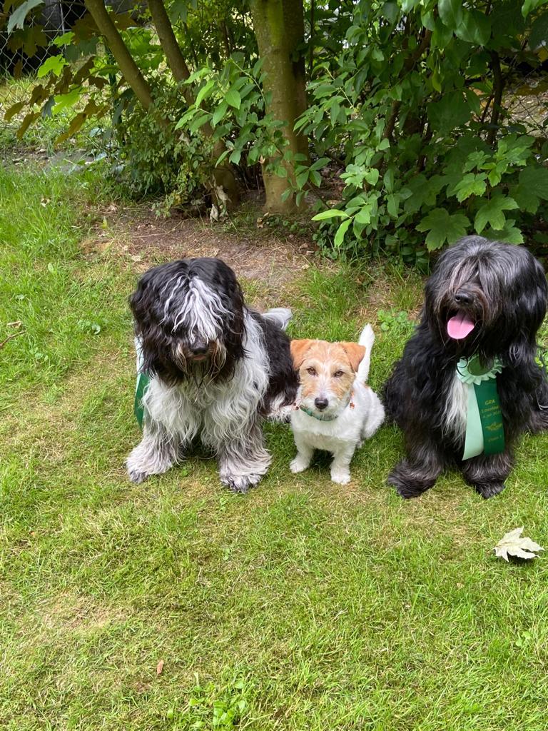 Das Trio Bo Halbbruder Junior und Mats