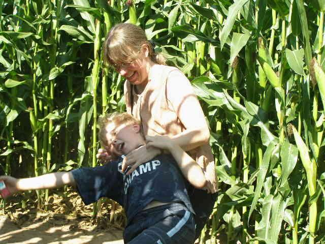 Verschollen im Maislabyrinth