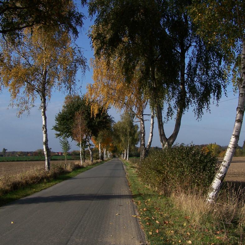 Radtouren auf dem Land