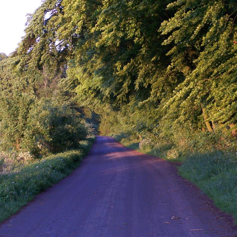 Radweg R1