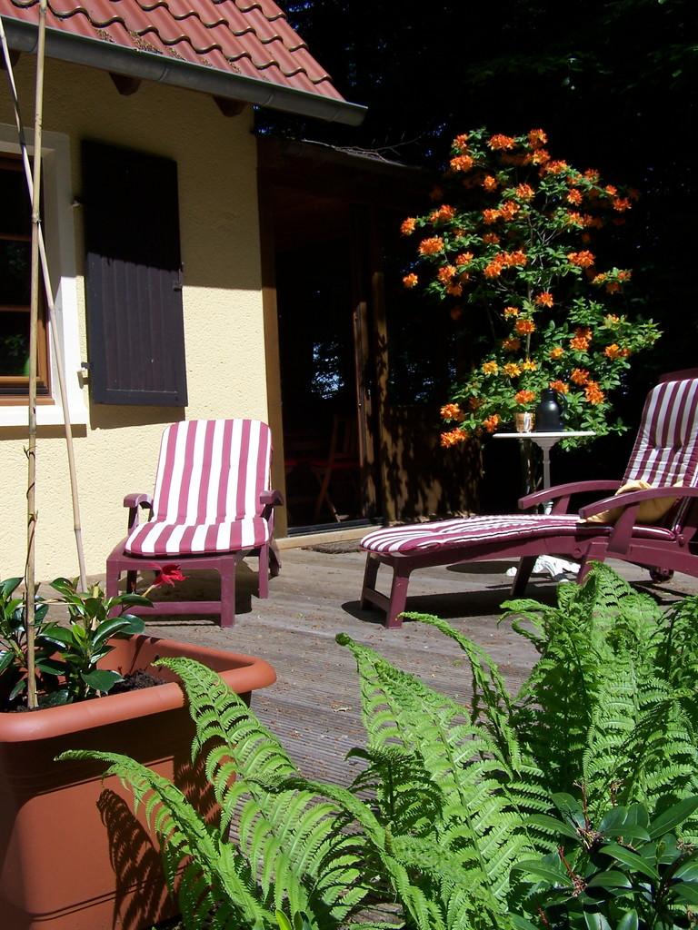 Ferienwohnung Im Waldwinkel, sonniges Plätzchen auf der Südseite