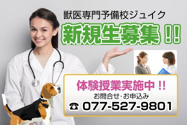 ホームページ制作 獣医予備校ジュイク様 体験授業バナー