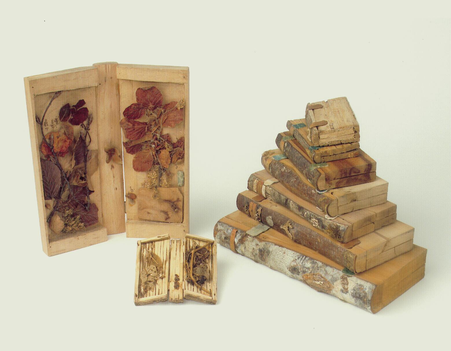 P. Chrysostomus Loibl und seine Holzbibliothek