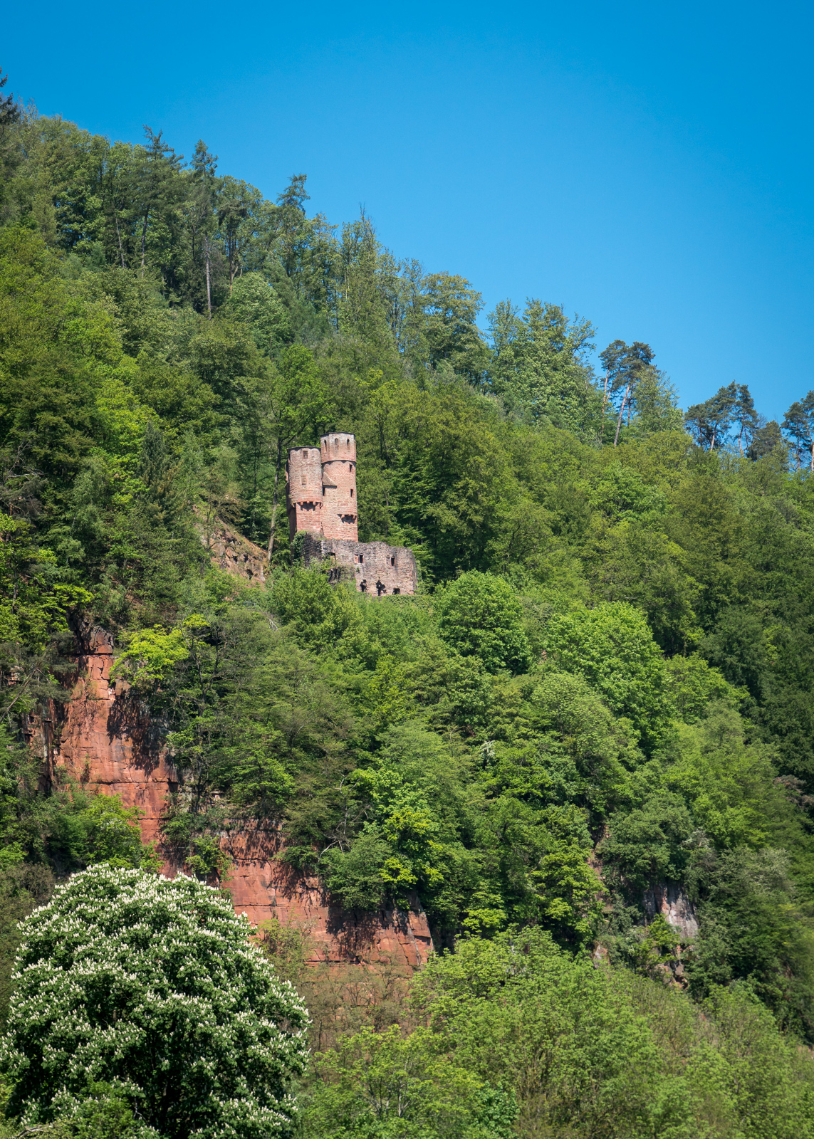 Burg Schadeck - das Schwalbennest