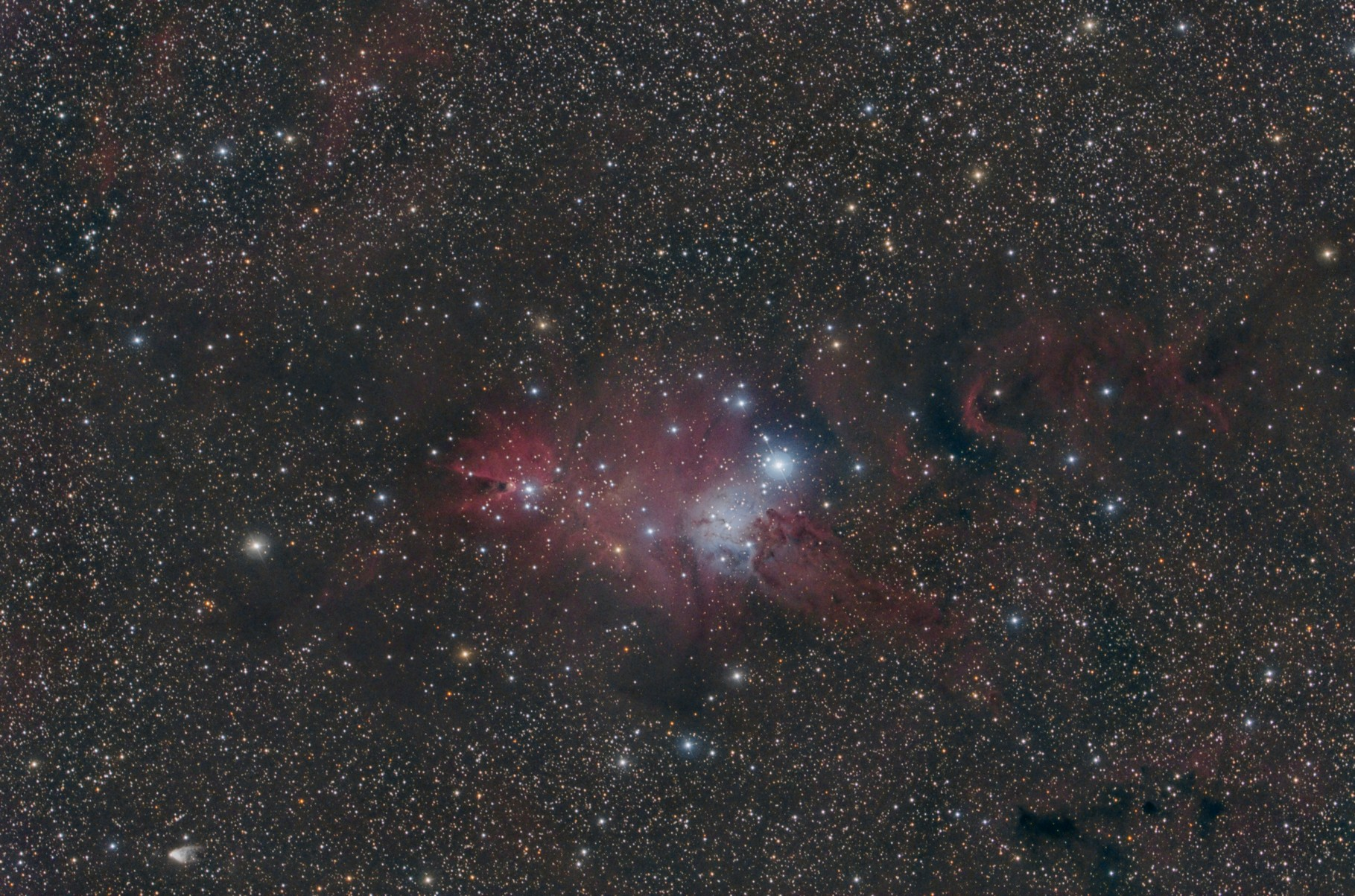 "NGC 2264, EdgeHD11"" mit Hyperstar, Alccd10, Baader Neodymiumfilter, 12x300s, 11x420s, 4x600s"