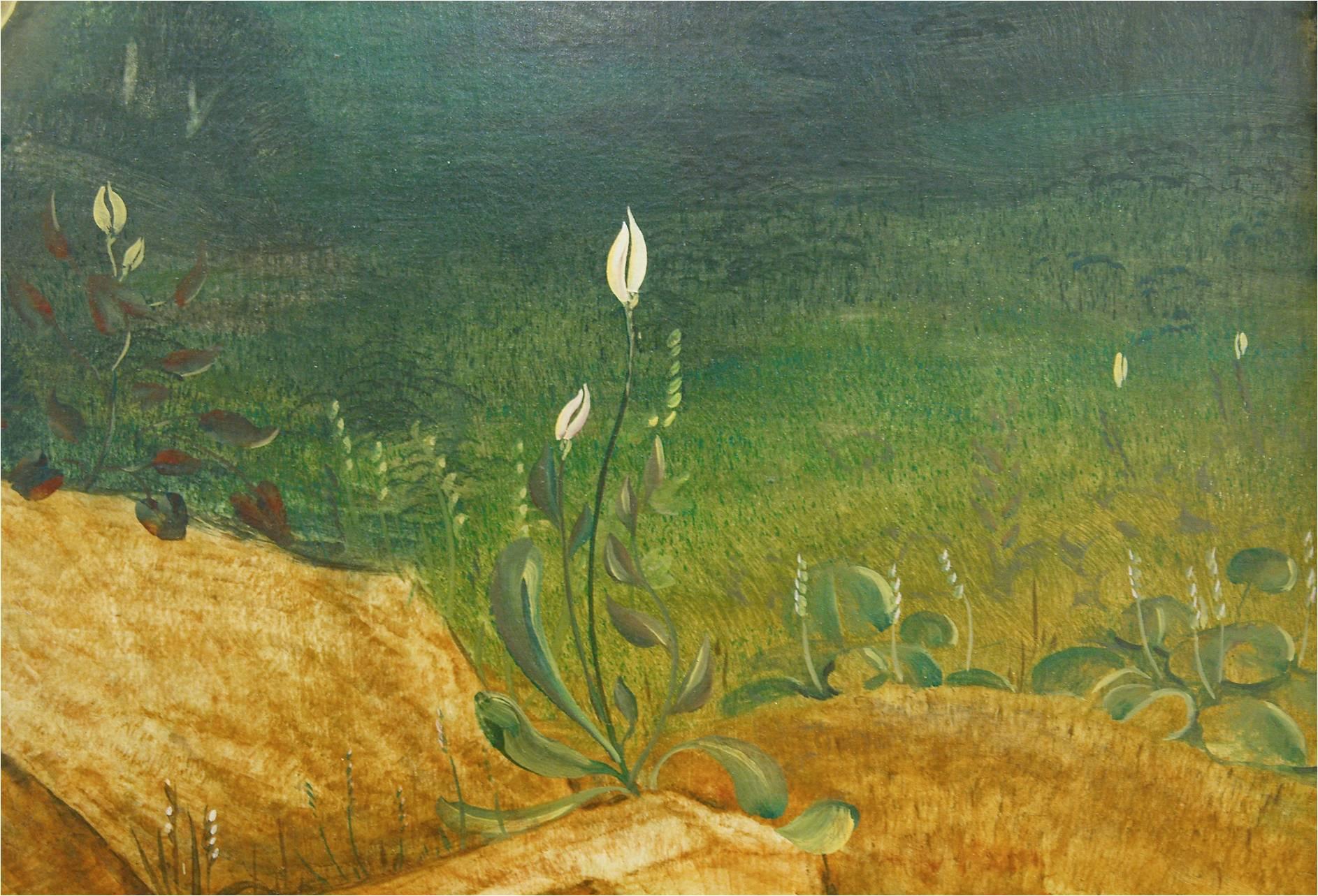 Blumen blühen neben dem Grab. Blumen mit weißen Blüten, die auch wieder an das Licht erinnern. Eine Blume hat herzförmige Blätter: Aus Liebe zu uns ist Jesus am Kreuz gestorben.