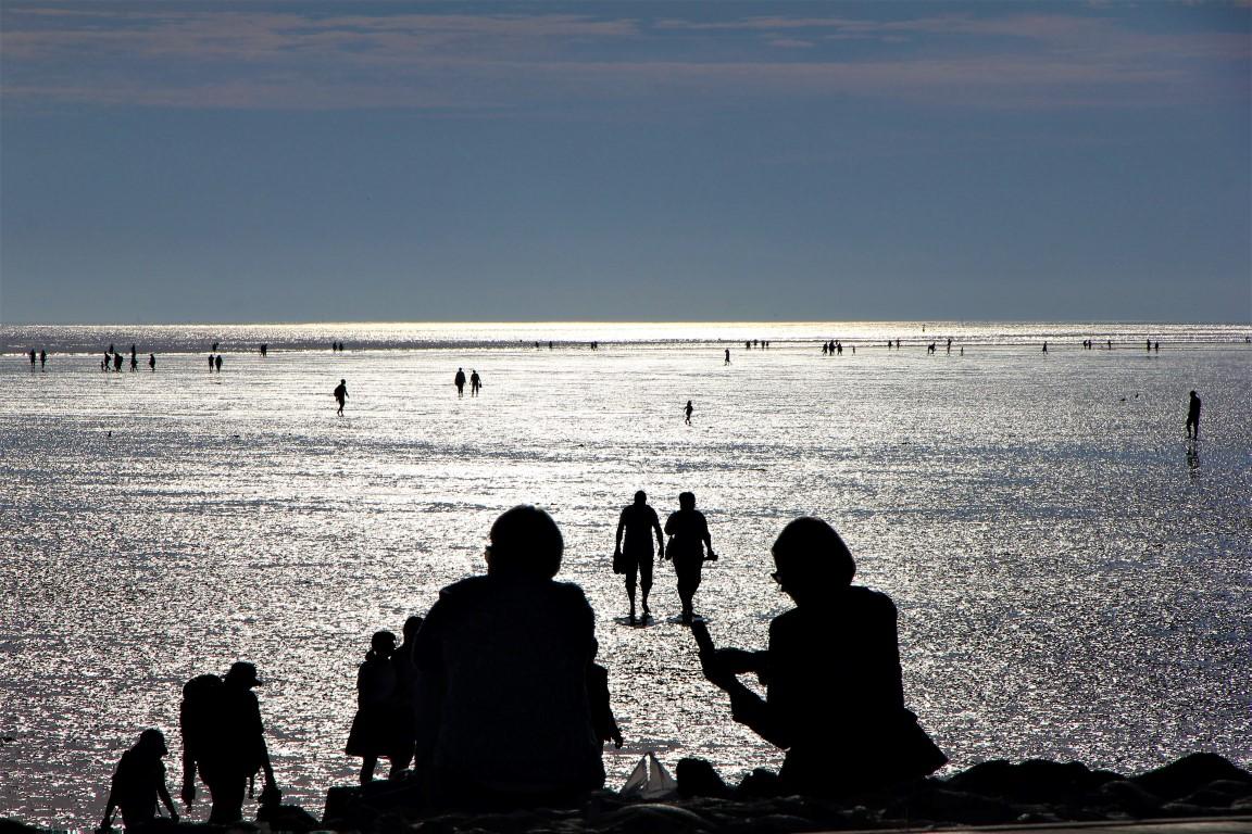 Nordsee | Büsum | Wattenmeer II