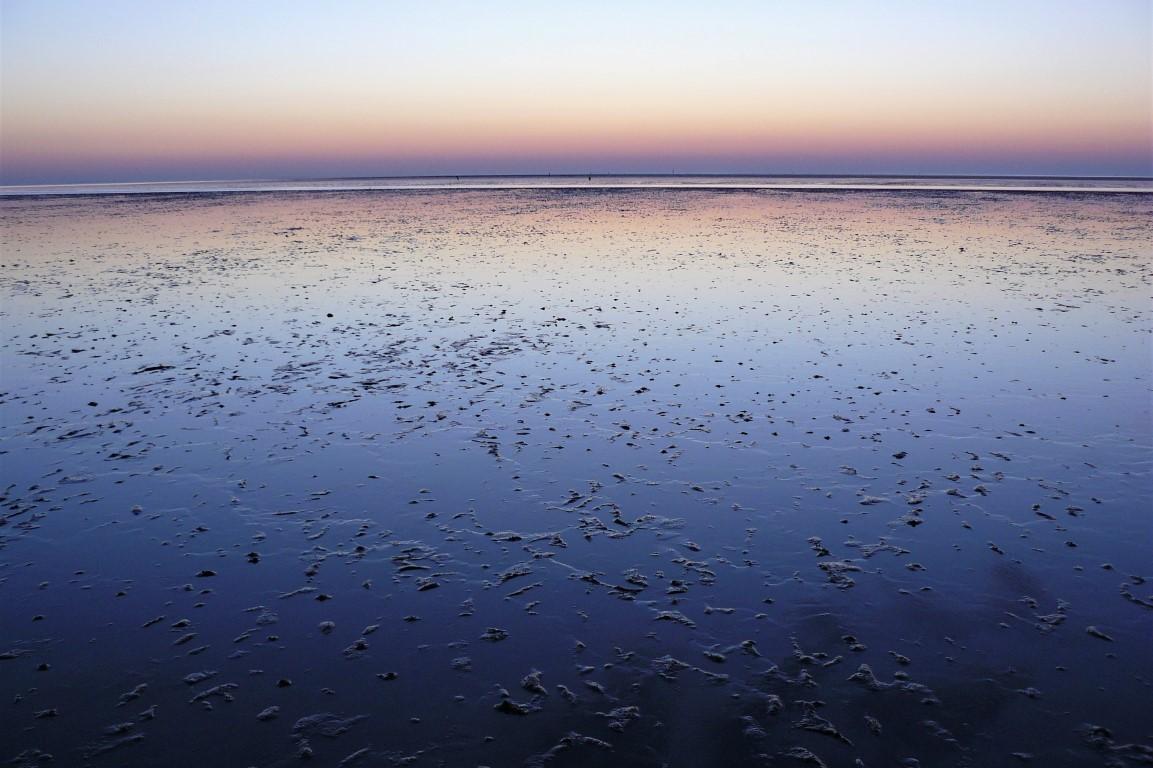 Nordsee | Büsum | Wattenmeer III