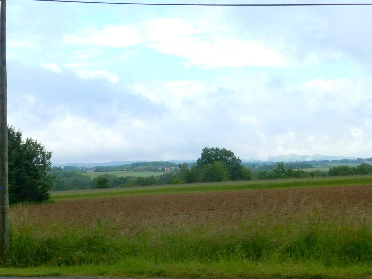 Sur la route de  Pampelonne