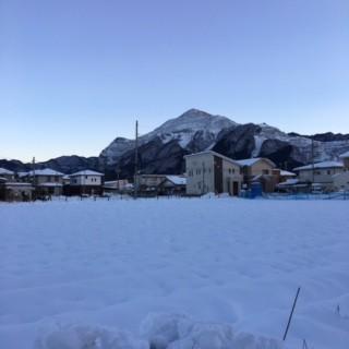 1月19日(火)
