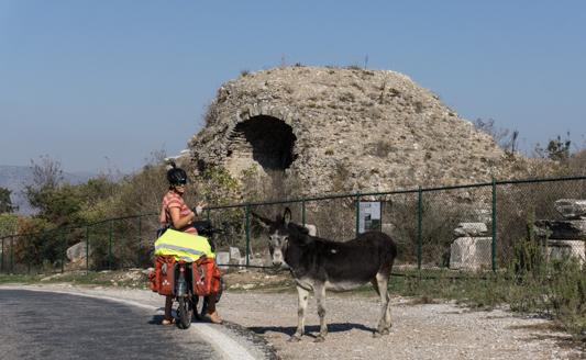 Der Esel wollte unbedingt ein Foto mit Angi.