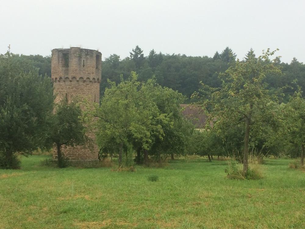 Stifterhof bei Odenheim (ehemaliges  Benediktinerkloster, Ritterstift)