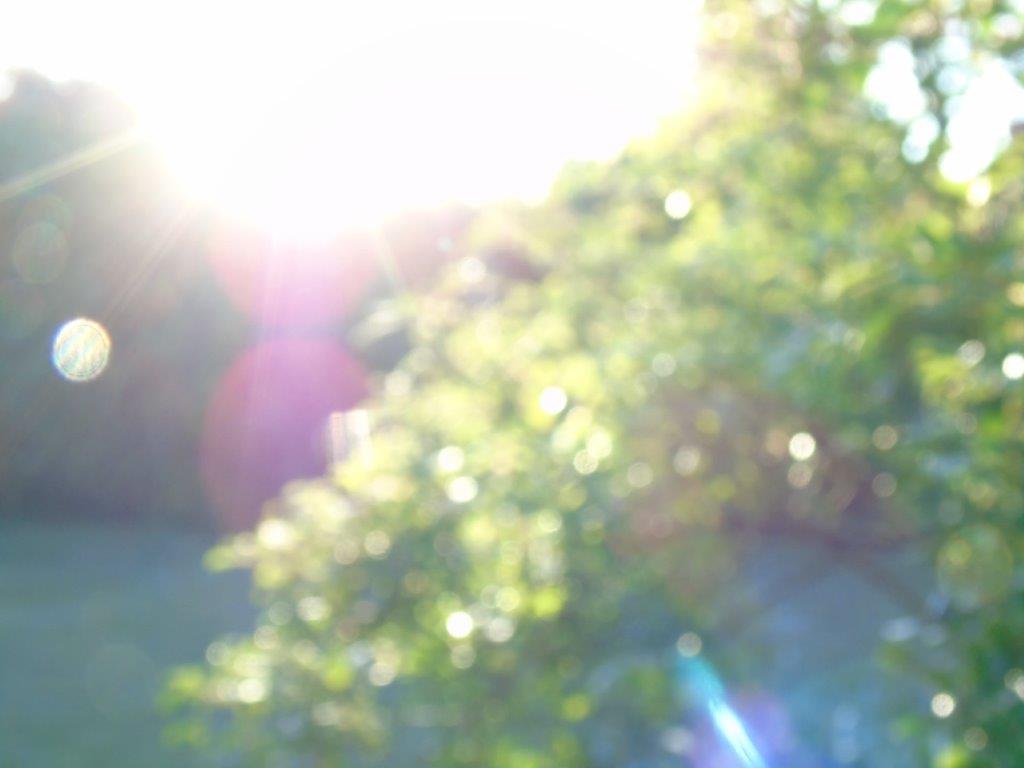 LICHTWESENFOTOGRAFIE: Ich bin das göttliche Morgenlicht