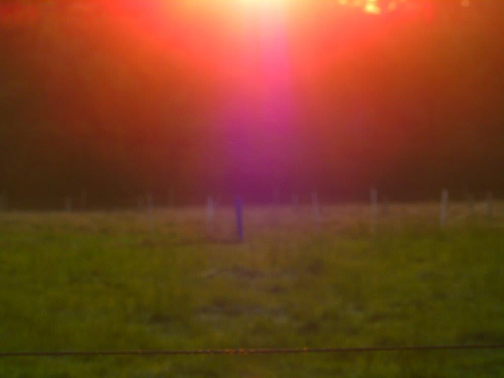 LICHTWESENFOTOGRAFIE: Geschenke aus der Zentralsonne