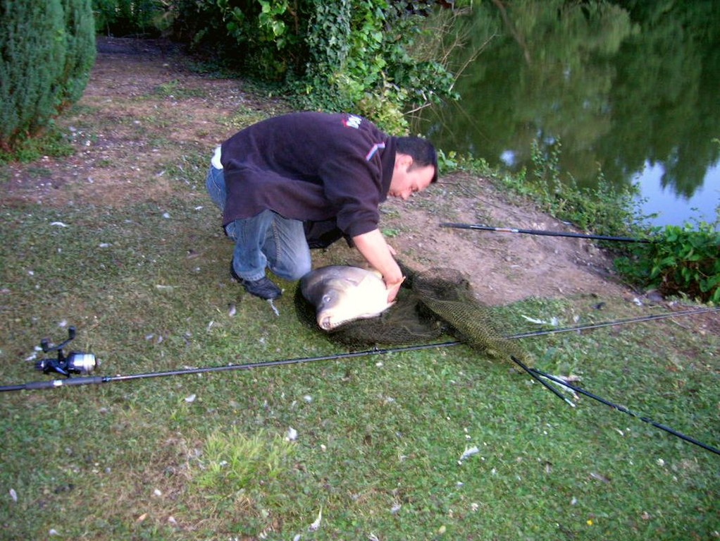 CARPE 19 KGS CANAL CHIPILLY