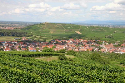 Blick auf Sasbach