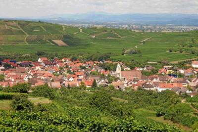 Blick auf Jechtingen und Eichertkapelle (im Hintergrund)
