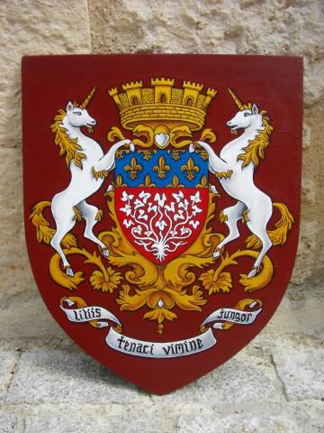 Armoiries d'Amiens 40x50cm