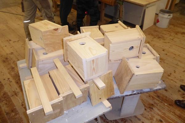 Der frühe Vogel Tischlerhandwerk NRW Vogelschutz Nistkasten Nistkastenbau NABU Düren