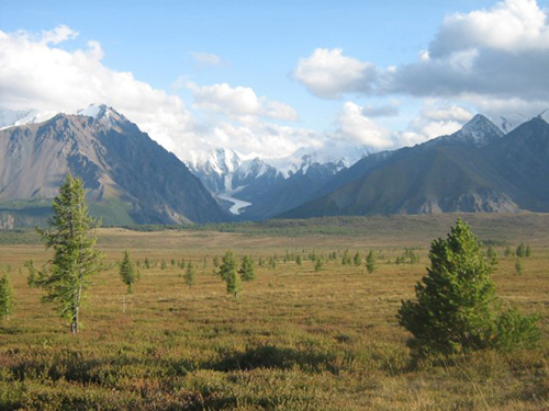 Altai gebergte van de campbelli