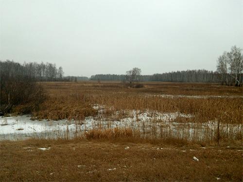Winter in Novosibirsk Zuid Siberië van de rus