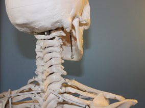 Masaż kręgosłupa, rehabilitacja kręgosłupa Bielany. Leczenie dyskopatii, rwy kulszowej, przepukliny krążka międzykręgowego i kręgozmyku - terapia manualna i masaż Bielany, Żoliborz, Bemowo.