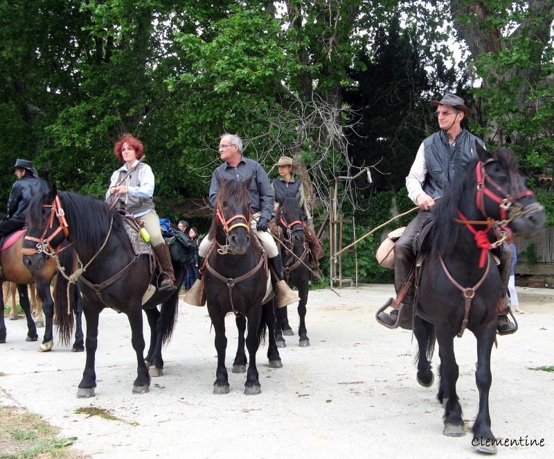 Ballade avec les chevaux ariégeois de Merens