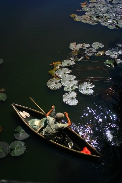 Pêcheur dans les douves de la forteresse impériale (Hué, Viet Nam)