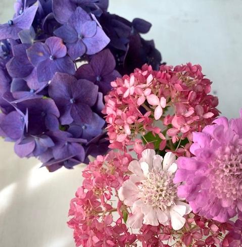 花のある暮らしを楽しむ