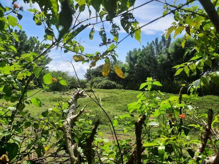 Bukit land for sale nearby Uluwatu