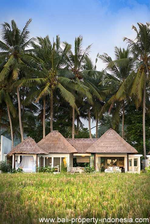South Ubud villa for sale including a rental license