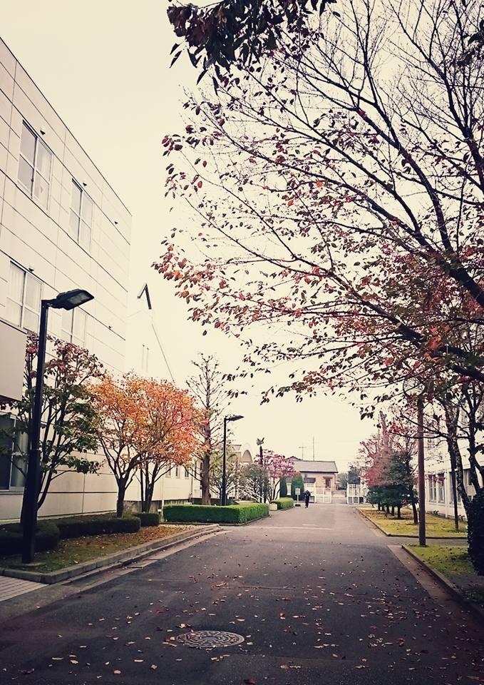 佐野日本大学短期大学で打ち合わ...