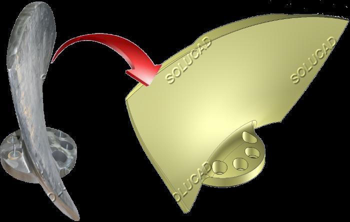 Scan 3D pale Kaplan