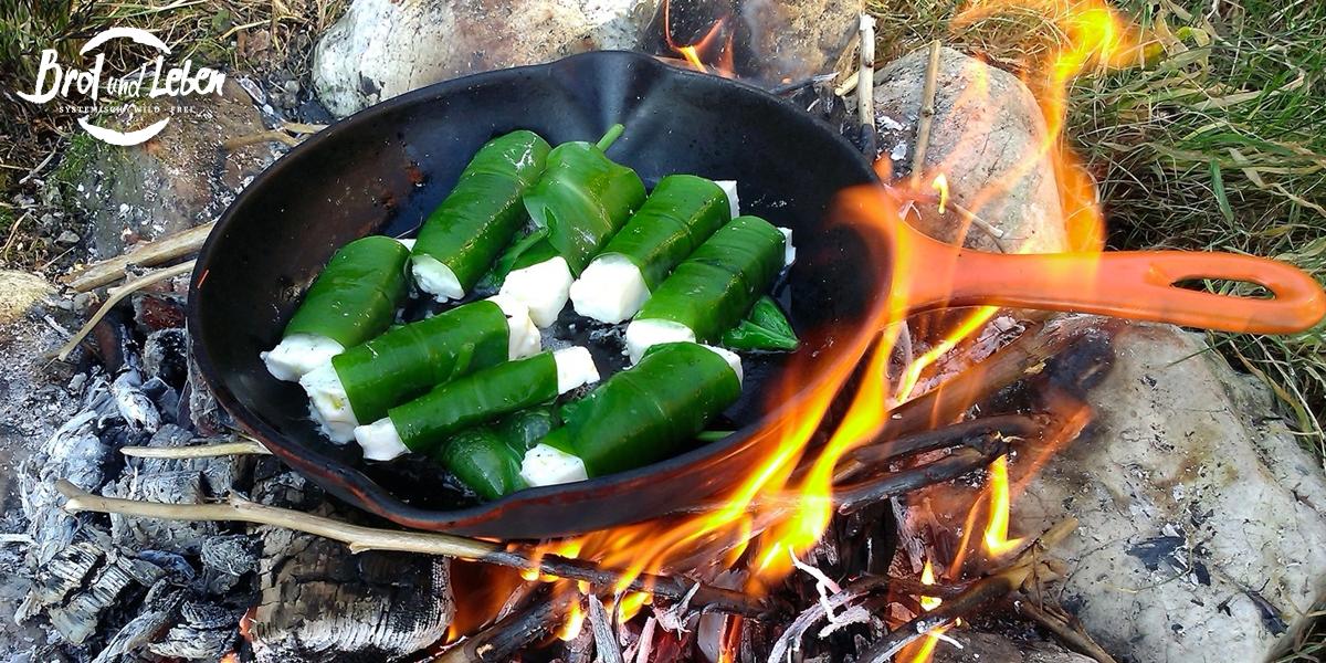 Schafskäse in Bärlauch am Lagerfeuer