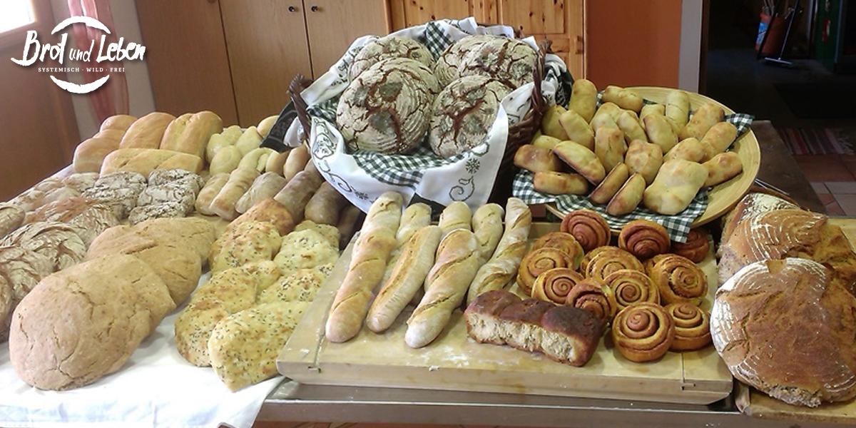 Brot-Delikatessen Kurs