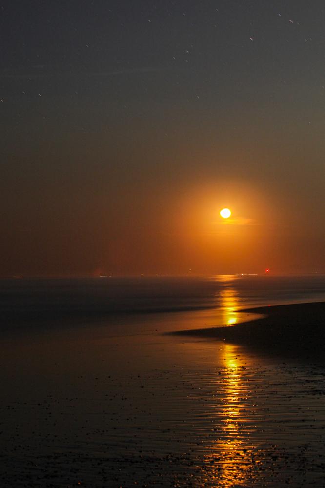 """太平洋ロングビーチ CanonEOS5Dmk2 CanonEF70-300mmF4-5.6L iso100 70mm f8 30"""" M photo : toshimasa"""
