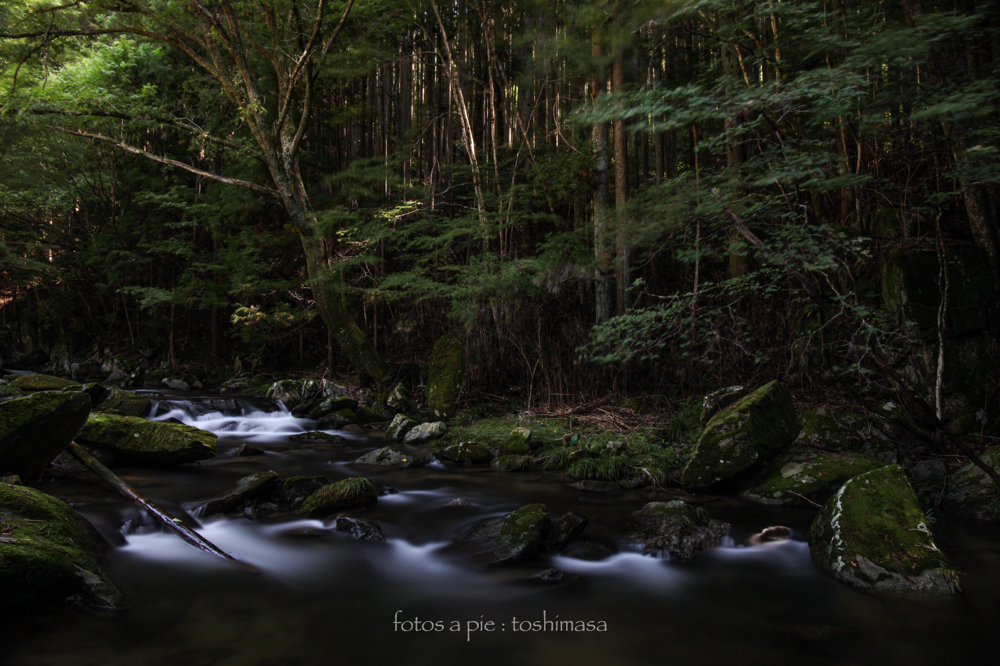 """CanonEOS5Dmk2  CanonEF24-70mmF4L  iso100 24mm f9 200"""" B NISI ND-1000"""