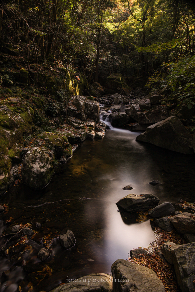 """CanonEOS5Dmk2  CanonEF24-70mmF4L  iso100 24mm f10 50"""" B  NISI ND1000"""