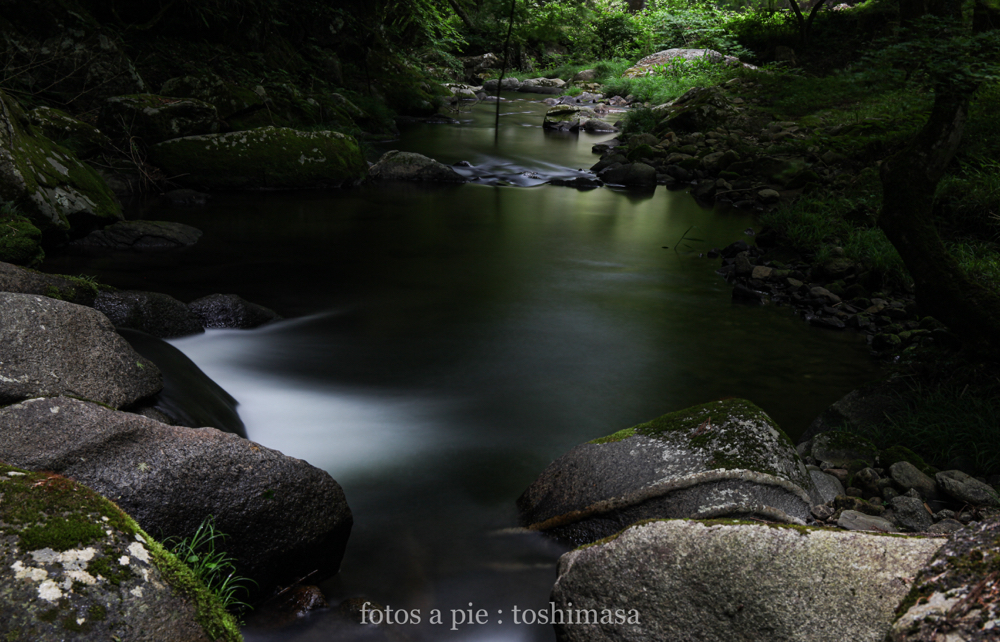 "CanonEOS5Dmk2  CanonEF24-70mmF4L  iso100 47mm f10 50"" B  photo : toshimasa"
