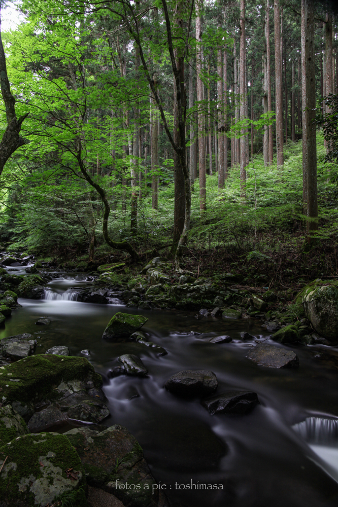 """CanonEOS5Mk2 CanonEF24-70mmF4L iso100 24mm f10 200"""" B NISI-ND1000  photo : toshimasa"""