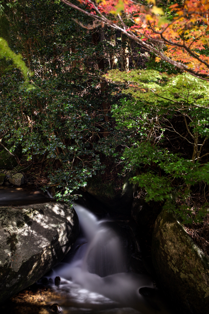 "野原川 CanonEOS 5Dmk2 CanonEF 24-70mmF4L iso100 37mm f10 50"" B ND1000 photo : toshimasa"